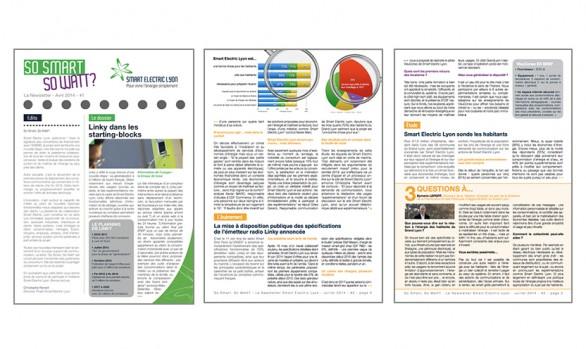 Newsletter trimestrielle <br />Smart Electric Lyon